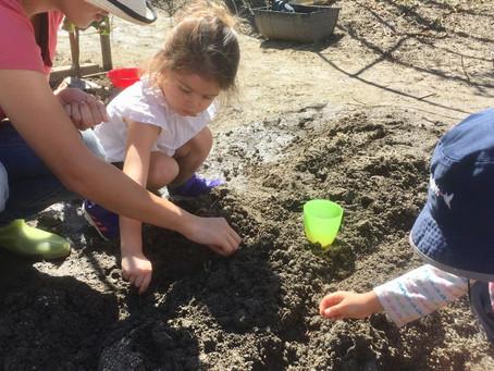 モンテッソーリ トドラークラス(2歳児)・親子クラス参加者募集