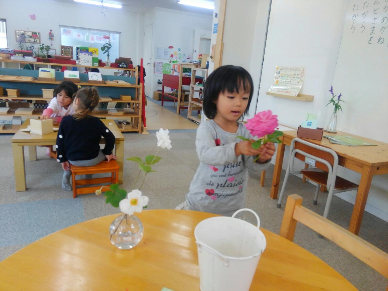 ガーデンで採れた花を飾りましょう