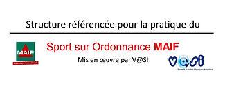 logo_MAIF_V_SI.jpg