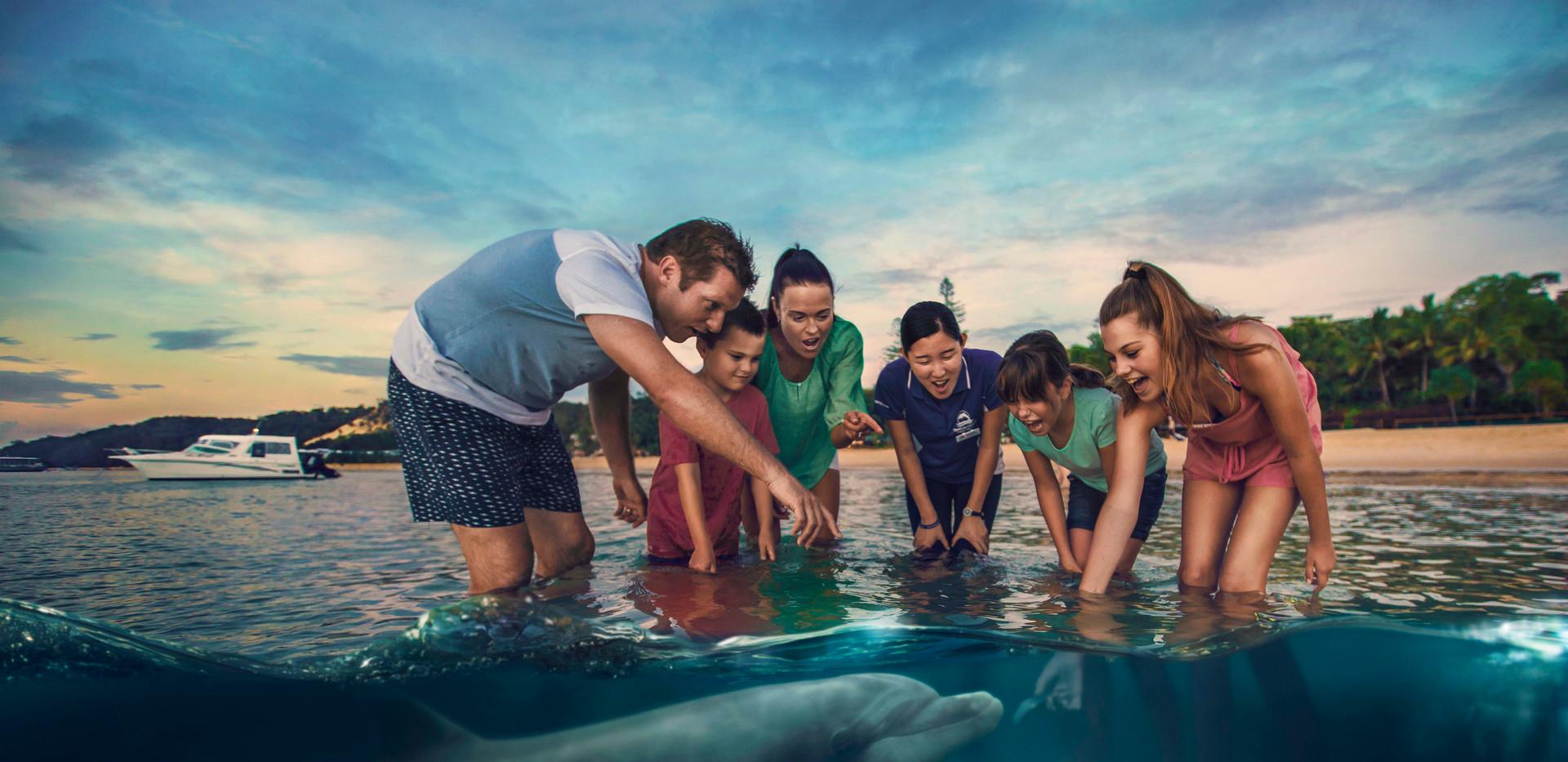 Dolphin Feeding - Tangalooma Island Reso