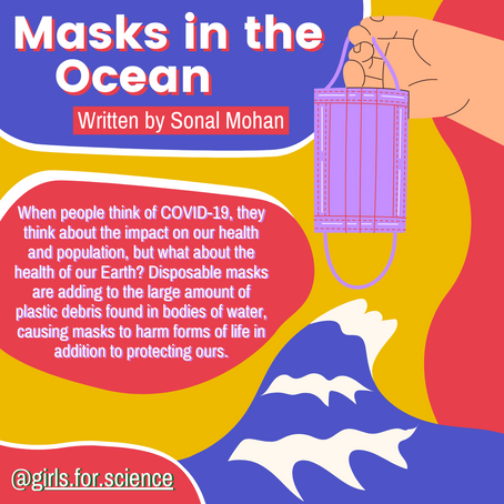 Words Matter: Disposable Masks Protect Us But Harm the Environment