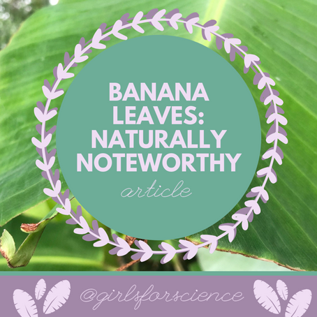 Words Matter: Banana Leaves - Naturally Noteworthy