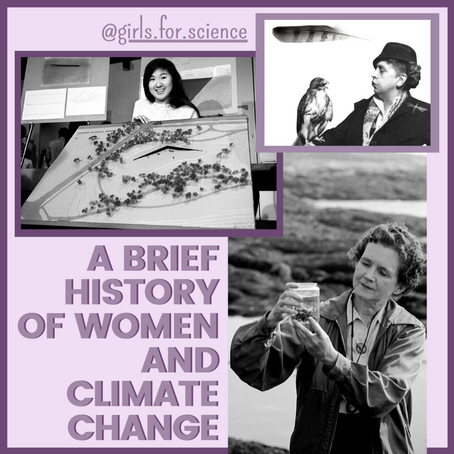 Words Matter: A Brief History of Women and Climate Change