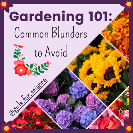 Words Matter: Gardening 101 - Common Blunders to Avoid