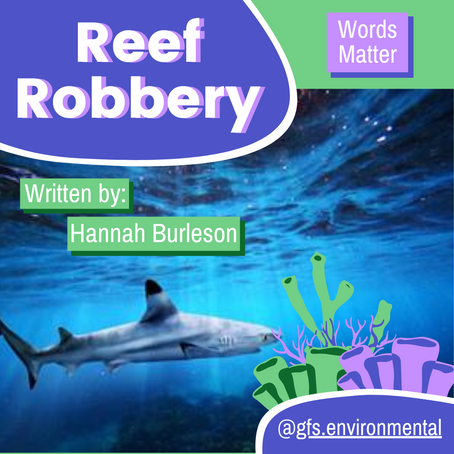 Words Matter: Reef Robbery