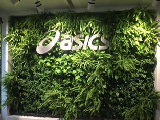 ASICS - BRUSSELS, BELGIUM