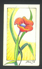 NATALIE CARD 2003