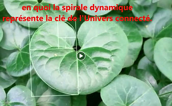 Dynamique univers.JPG