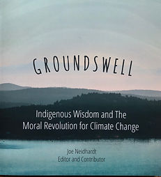 Groundswell Book Cover.jpg
