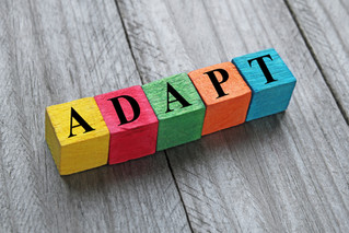 Adaptability. And Why You Need It.