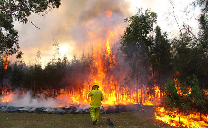 Victorian bushfires - tax and duty relief