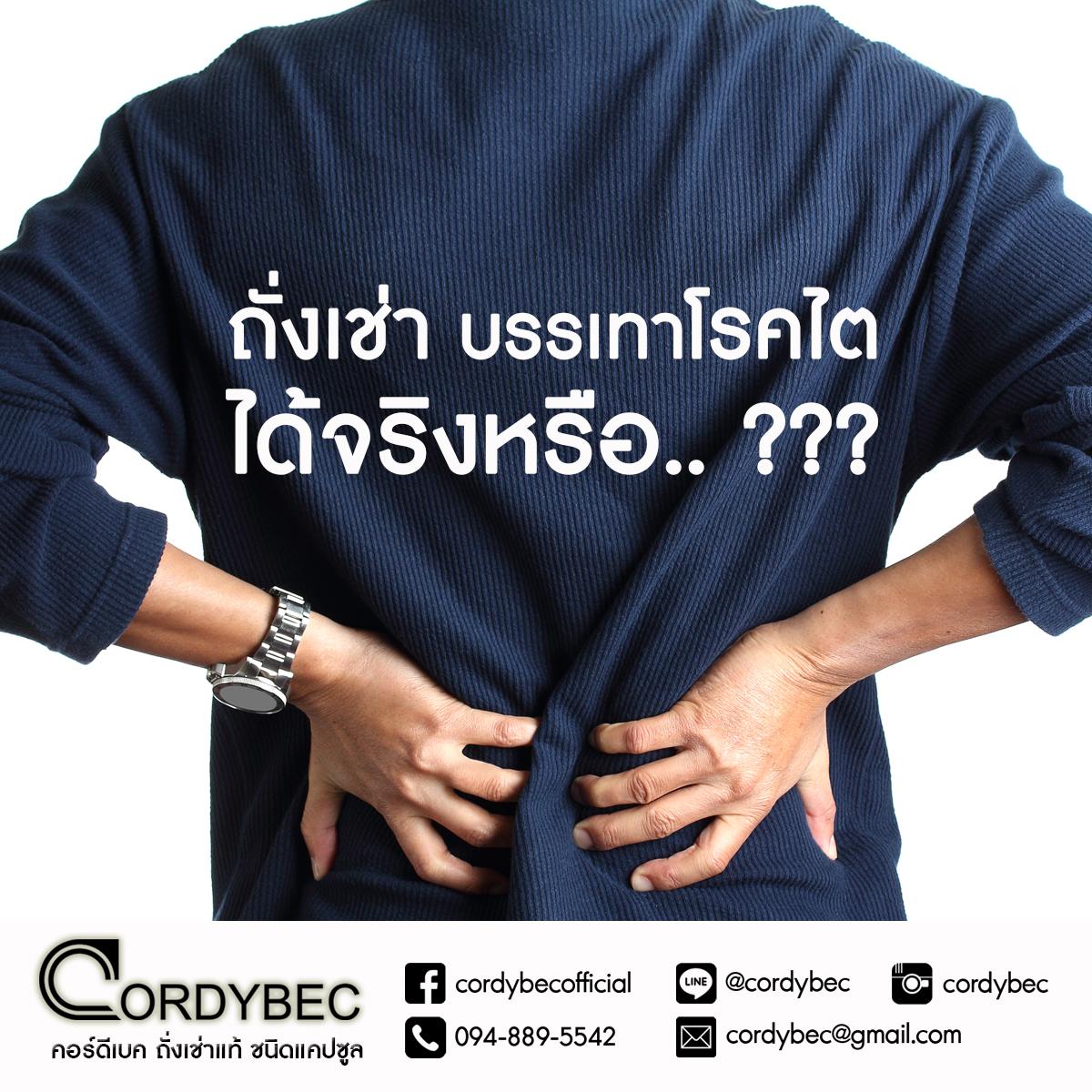 Cordybec kidney 002