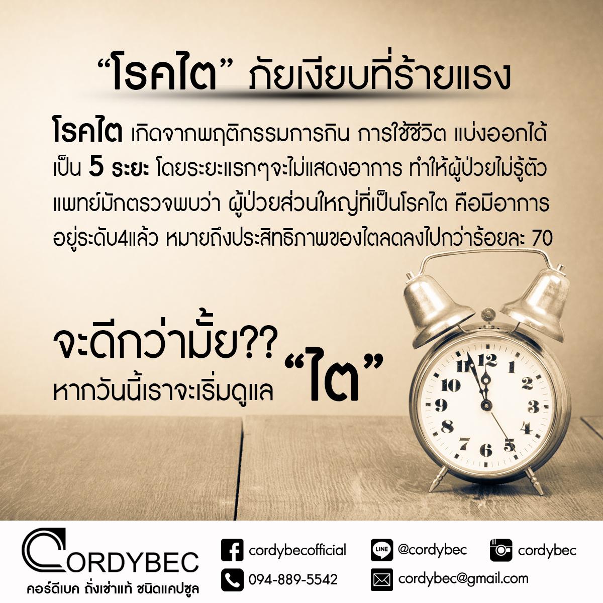 Cordybec kidney 008