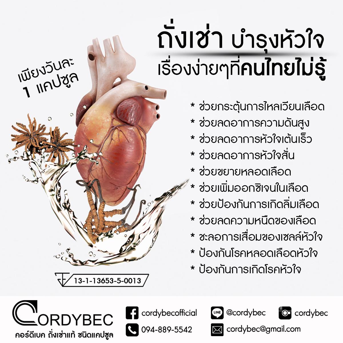 Cordybec Heart 019