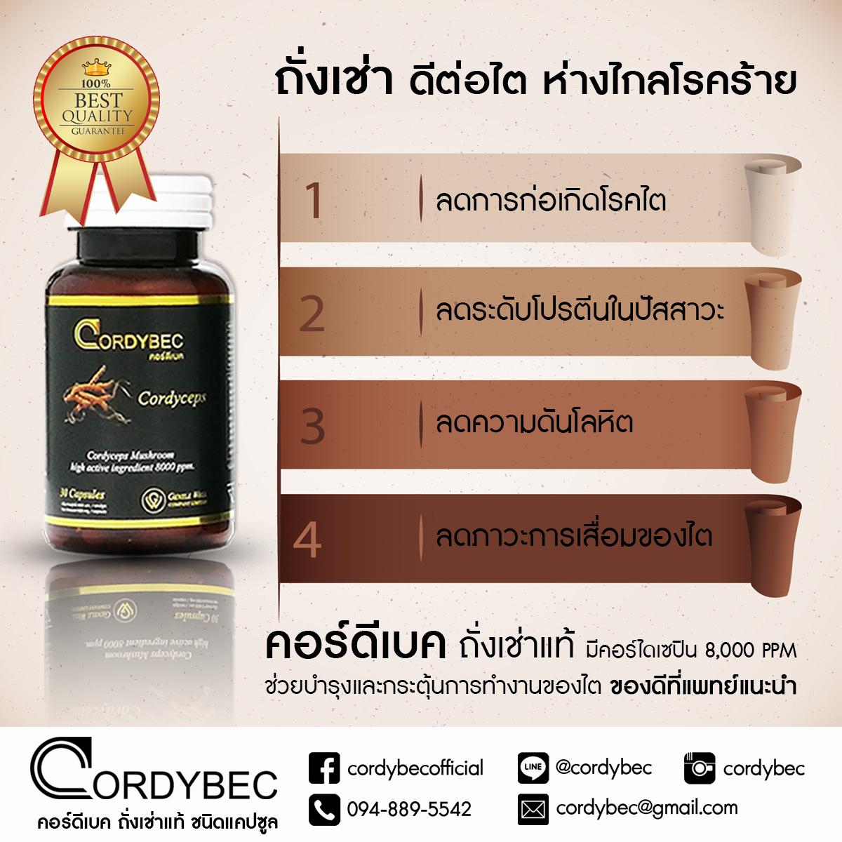Cordybec kidney 020