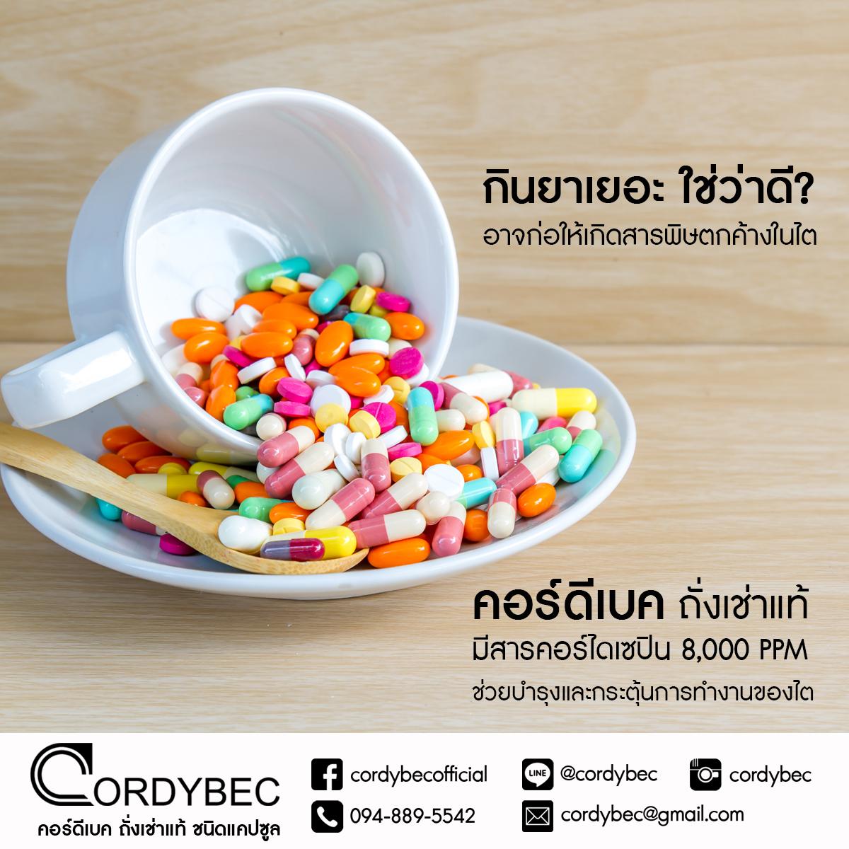 Cordybec kidney 014