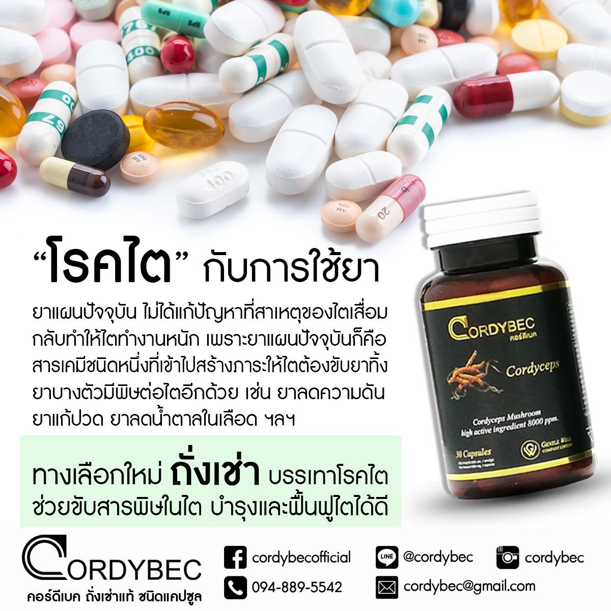 Cordybec kidney 012