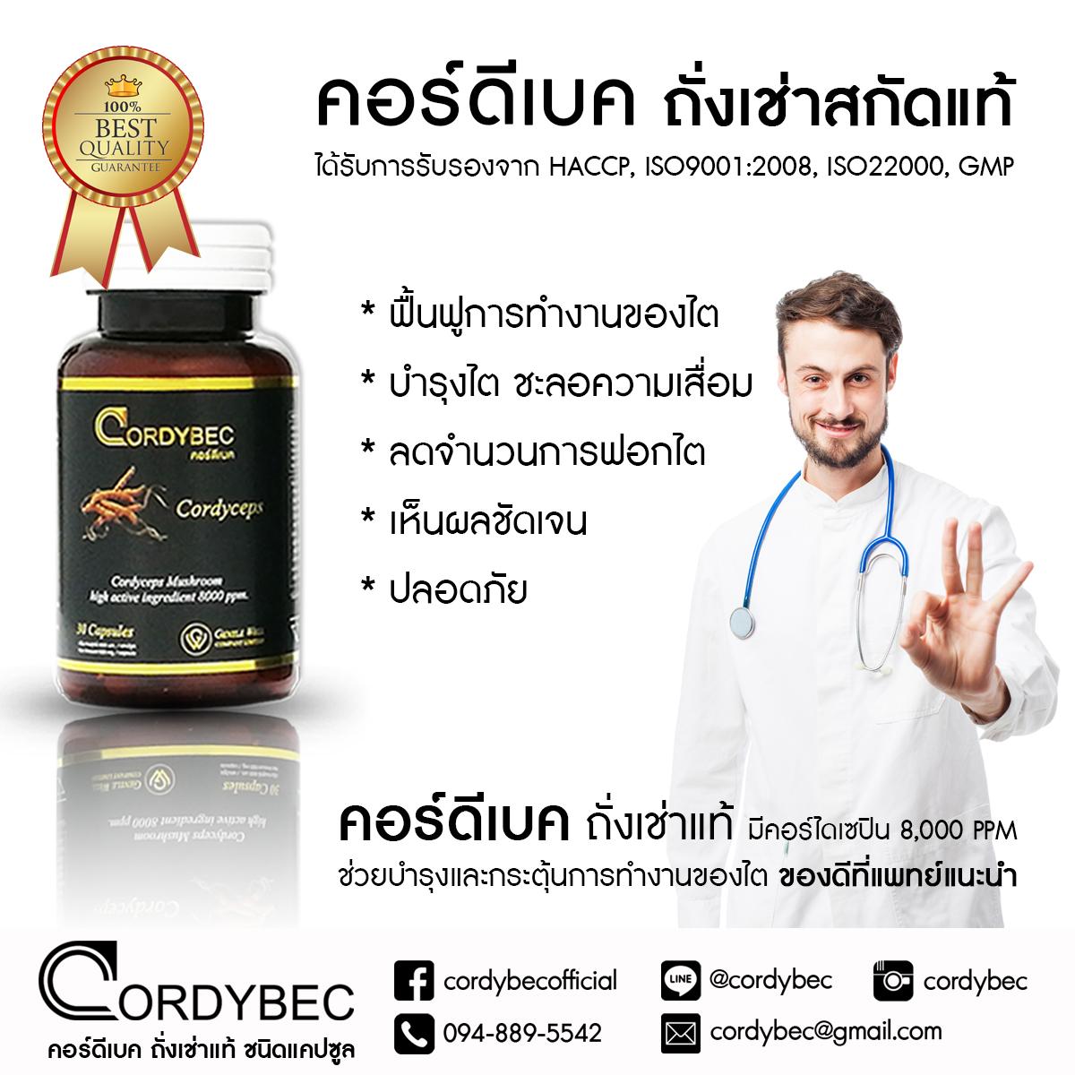 Cordybec kidney 021