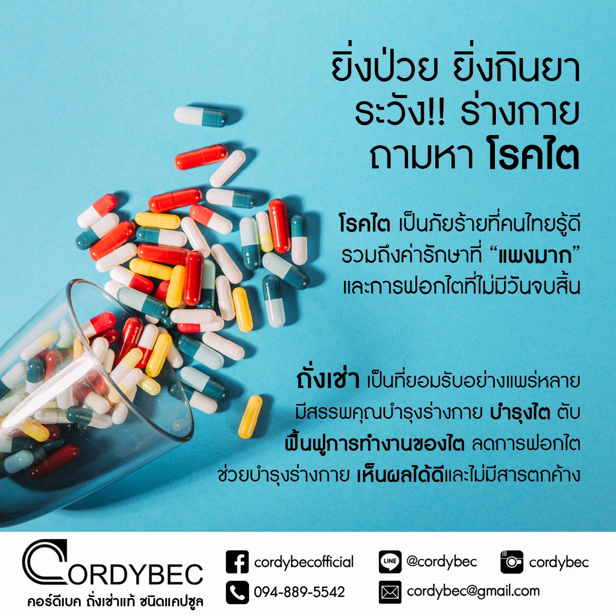 Cordybec kidney 016