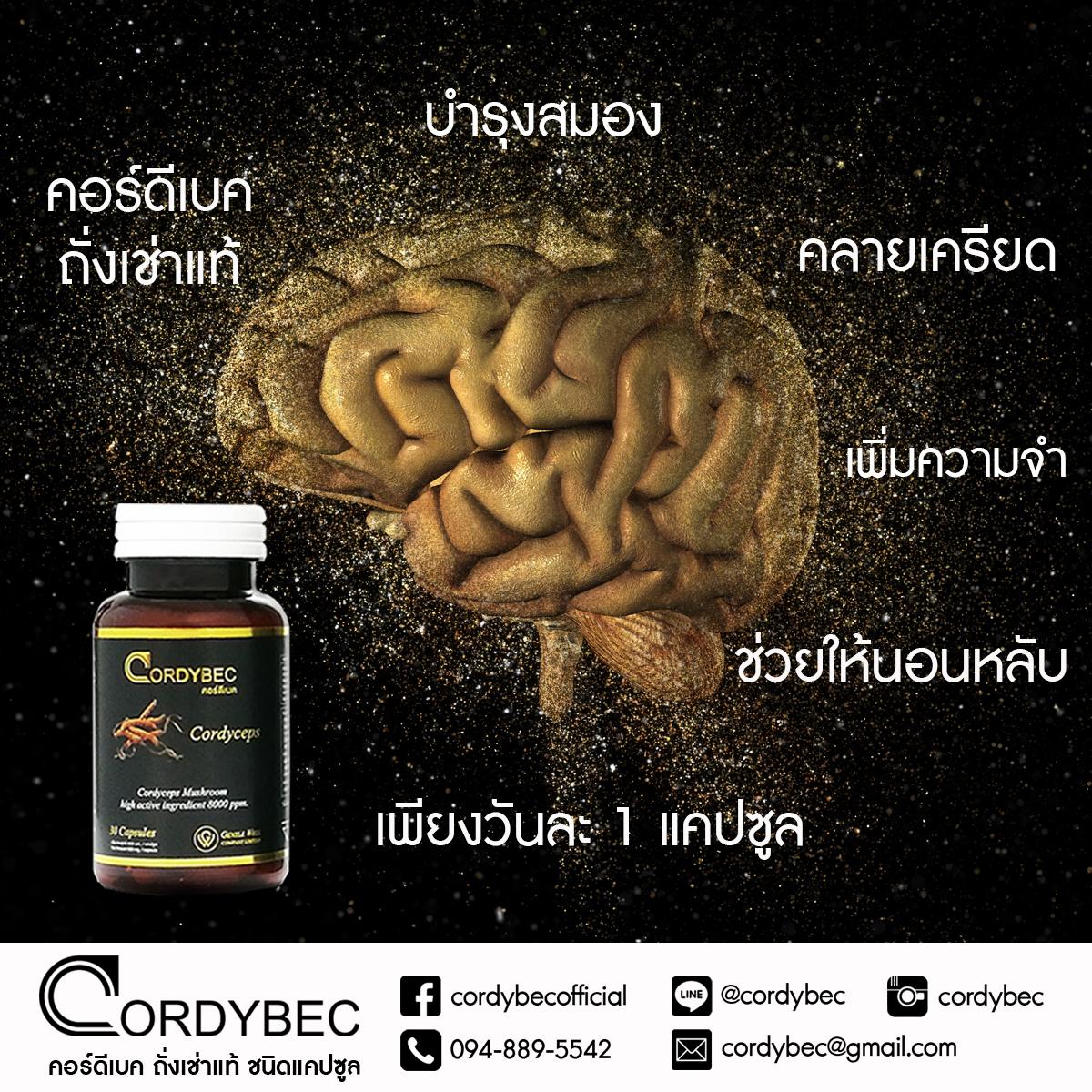 Cordybec Brain 002