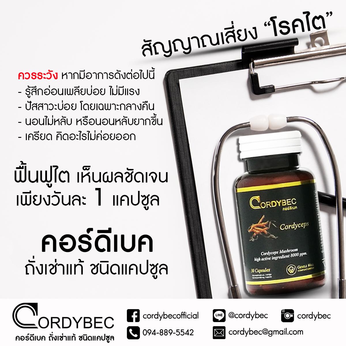 Cordybec kidney 011