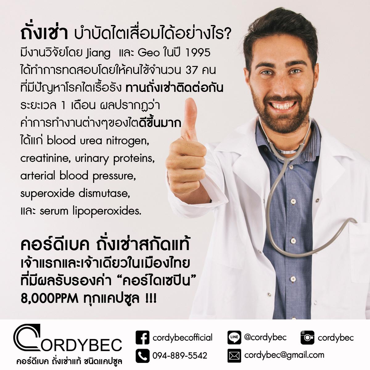 Cordybec kidney 018
