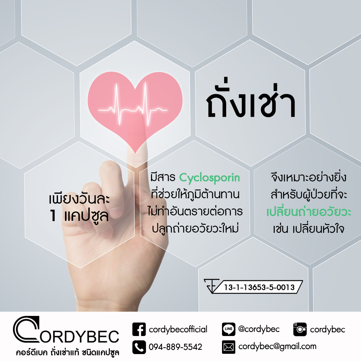 Cordybec Heart 018