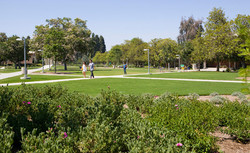 Valley College Entry and Main Quad
