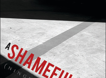 'A Shameful Life' reviewed by Japan Visitor