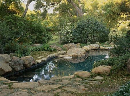 The Lightest Touch: Isabelle Greene's Enduring Design for the Lovelace Garden