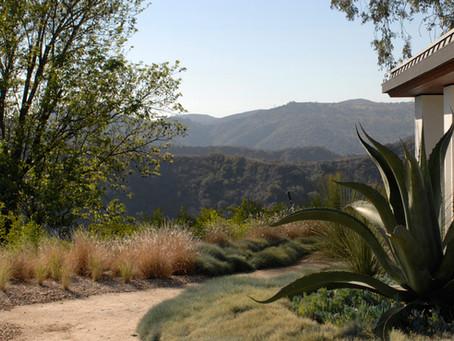 Garden Conservancy Open Day Showcases Architect's Garden