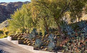 desert-retreat-08.jpg