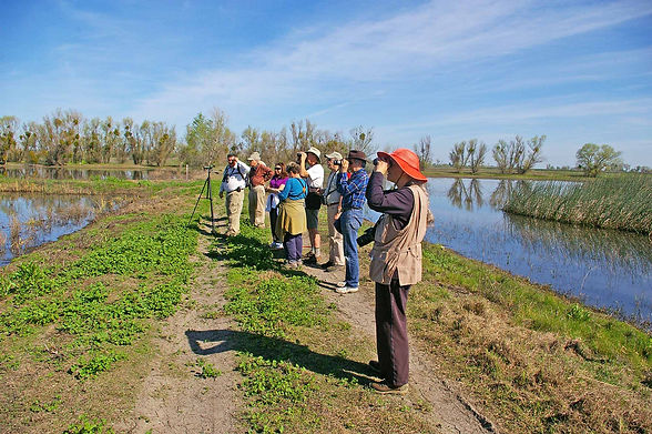 Friends-of-Stone-Lakes-Bird-Watchers.jpg
