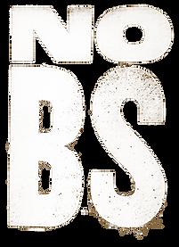 NO-BS-Art-Sepia-960w.png