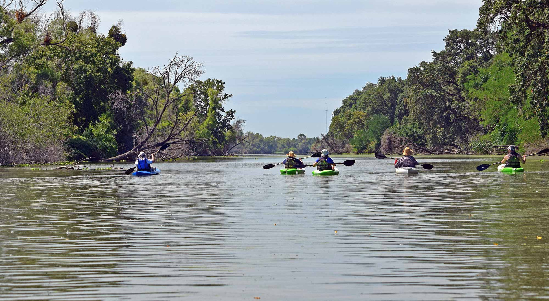 Guided Kayaking Tours