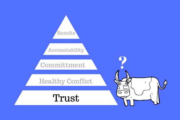 It's No Bull: Joyful Play Builds Trust