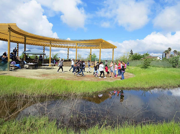 Learn about our Hidden Jewel - Stone Lakes National Wildlife Refuge