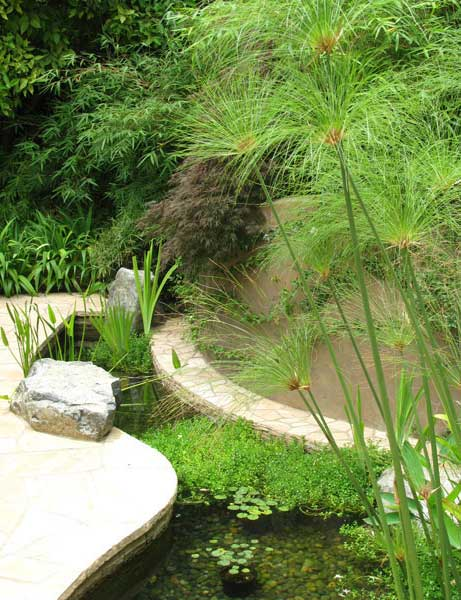 Garden on the Arroyo