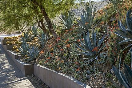 Desert Retreat Transformation