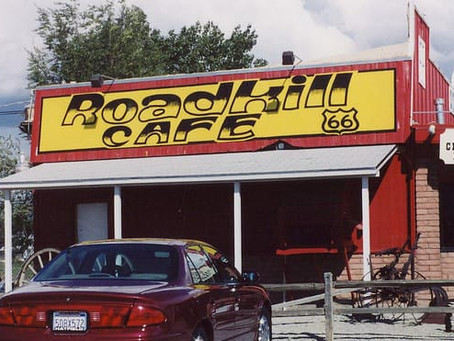 Eating Roadkill: A Weird But Legal Way to Save Money on Groceries!
