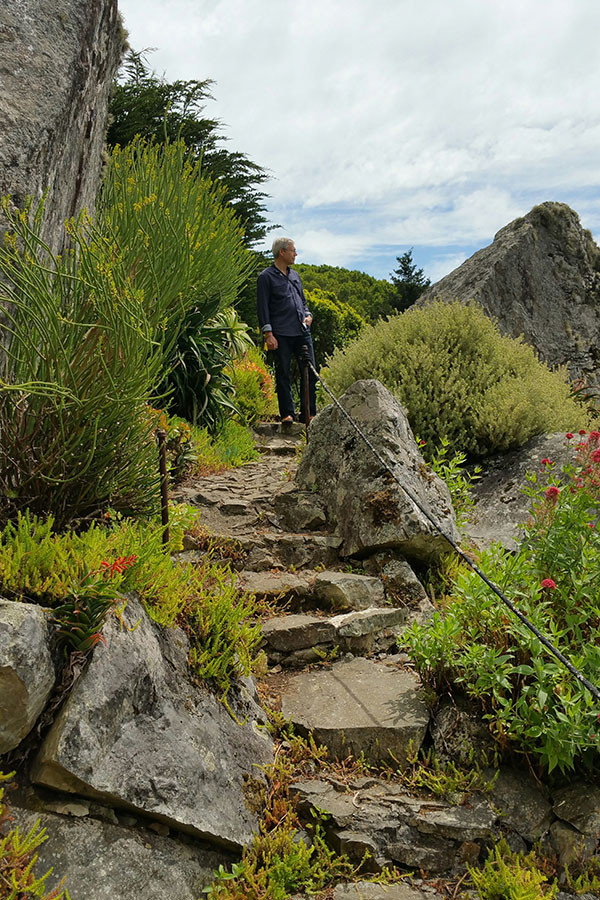 Open Day Gardens in Southern Marin