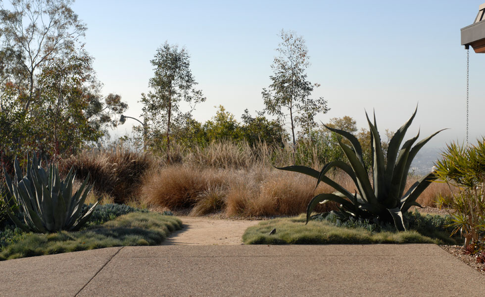 Architect's Garden