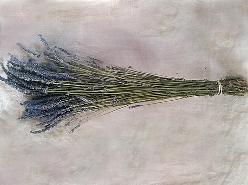 Dried French Grosso Lavender Bouquet