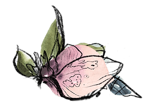 home-petal-leaves.png