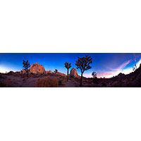 HIDDEN ROCK 1 (JOSHUA TREE 2015)