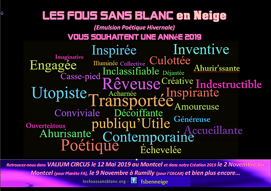 voeux 2019p2.PNG
