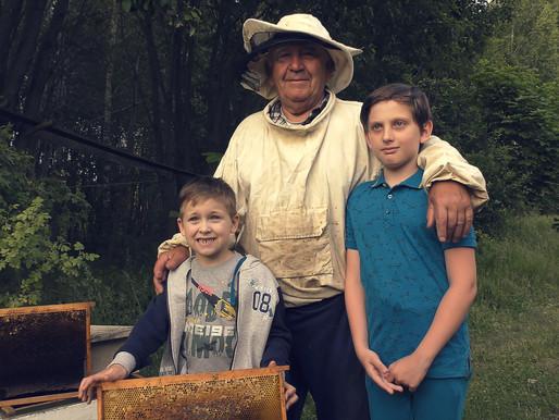 ПЧЁЛЫ на даче. Налетел РОЙ ПЧЁЛ. 🐝🐝🐝 ЧТО ДЕЛАТЬ? Дедушкины пчёлы и пасека. Изучаем пчёл