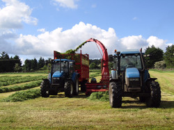 21 Silage