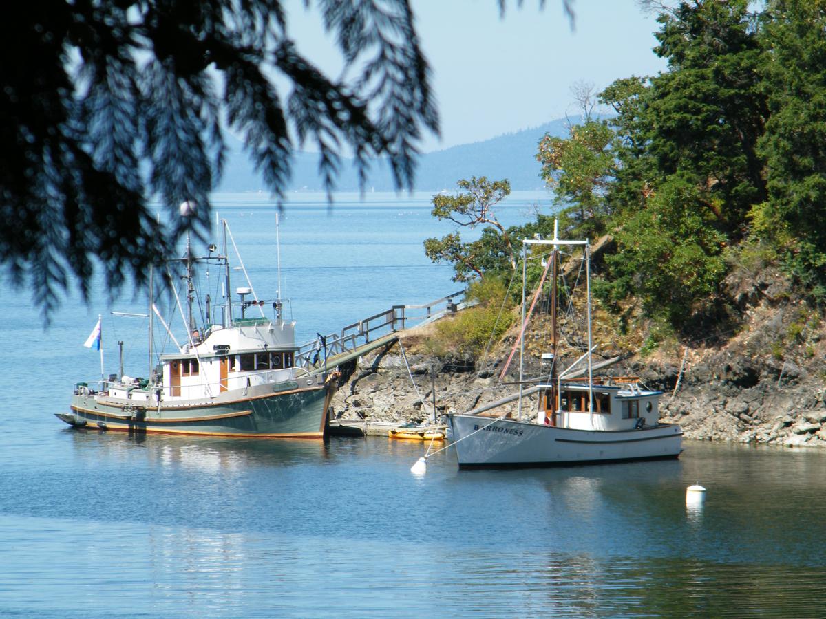014 Fishing boats