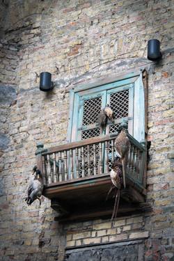 027 Balcony